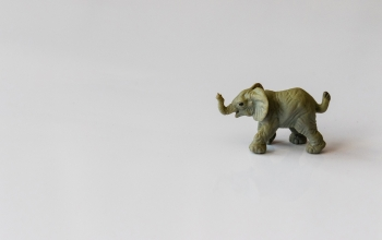 Canva - Gray Elephant Figurine 300px