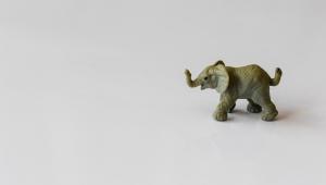 Canva - Gray Elephant Figurine 300px